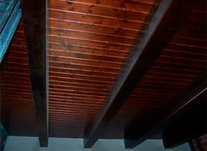 Interior de la Casa Blava (Techo de dormitorio)
